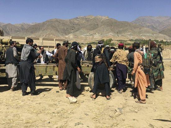 Талибы казнили жителя Панджшера за продажу SIM-карт