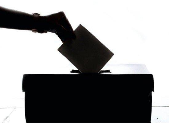 """Центризбирком гарантировал тайну волеизъявления при """"удаленном"""" голосовании"""