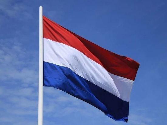 Члена совета Гааги заподозрили в покушении на премьера Нидерландов