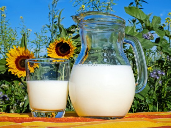 Россиянам раскрыли особую пользу молока на завтрак: борется с диабетом