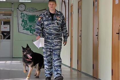 В России найден мертвым 33-летний начальник территориального Роспотребнадзора