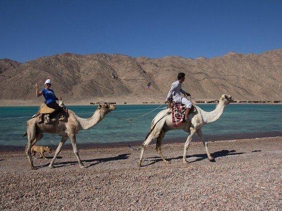 В Египте заработал «телефон доверия» для недовольных туристов