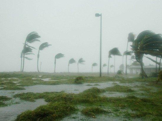 Беспилотник впервые передал кадры из эпицентра урагана четвертой категории