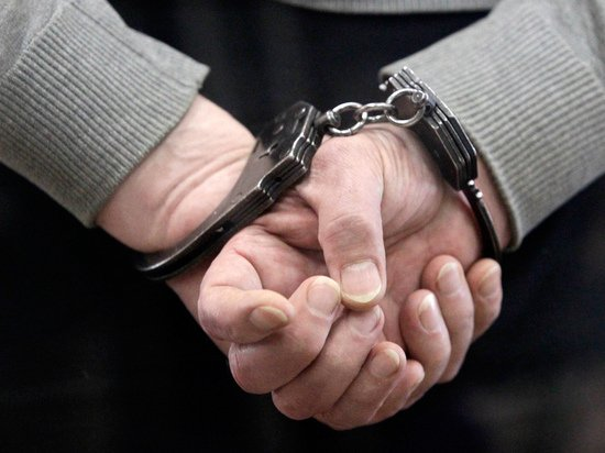 В Белоруссии за сутки задержали 200 комментаторов по делу Зельцера