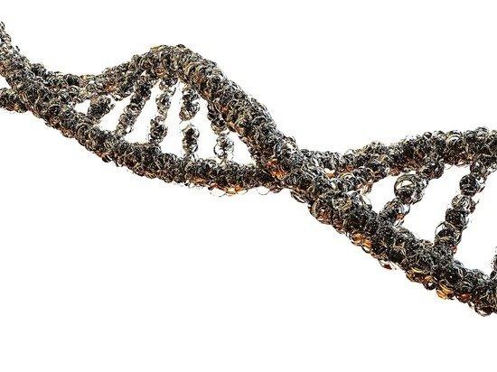 Ученые оценили связь COVID-19 с болезнью Альцгеймера