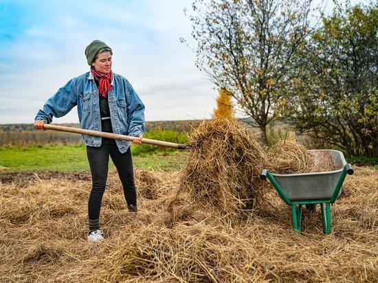 Приключения волонтеров на ферме: