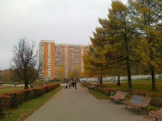 Михаил Шемякин рассказал о разнице между жителями Москвы и Петербурга