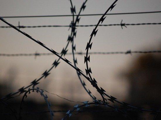 Литва начала строить 4-метровый забор на границе с Белоруссией